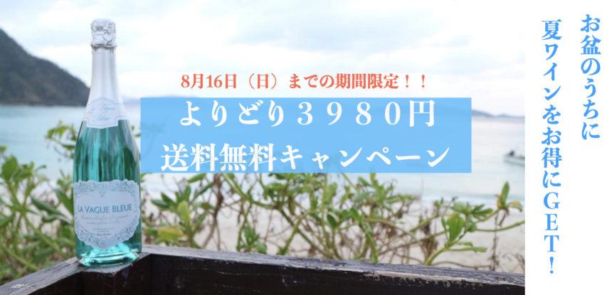 3980円送料無料キャンペーン